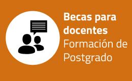 Convocatoria a postulación para Becas de Formación de Postgrado para docentes de la FAPyD