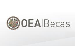 Becas OEA + Universidad Abierta de Catalunya